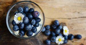 Blaubeeren in einer Dessertschale mit Gänseblümchen dekoriert